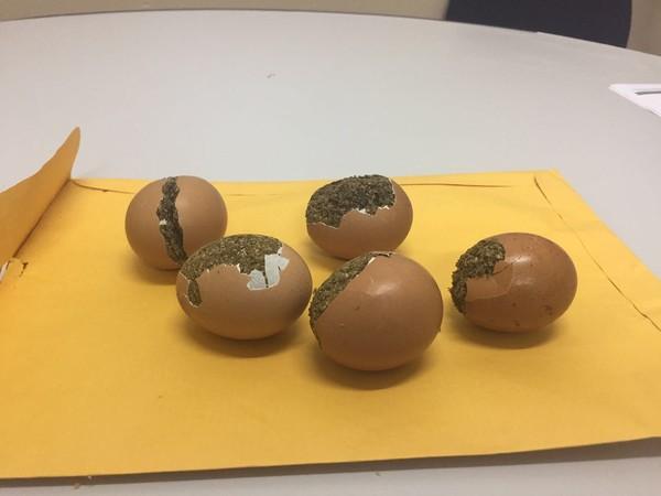 Homem entregaria ovos para amigo, diz Seap (Foto: Divulgação/Seap)