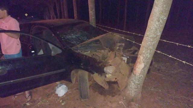 Idosa bateu o carro em árvore (Foto: Juliano Oliveira).