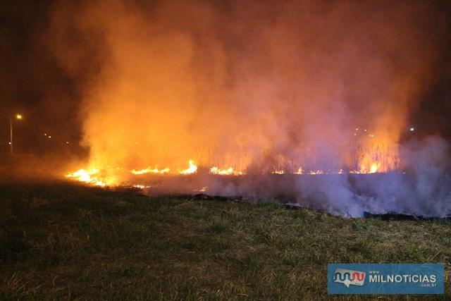 Incêndio se alastrou por uma área equivalente a quatro campos de futebol, queimando toda a vegetação. Fotos: MANOEL MESSIAS/Agência