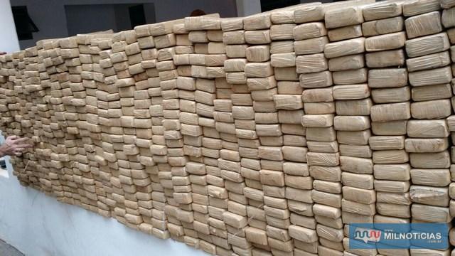 Foram apreendidos 693 tabletes de maconha (Cannabis Sativa). Foto: MANOEL Mil Noticias