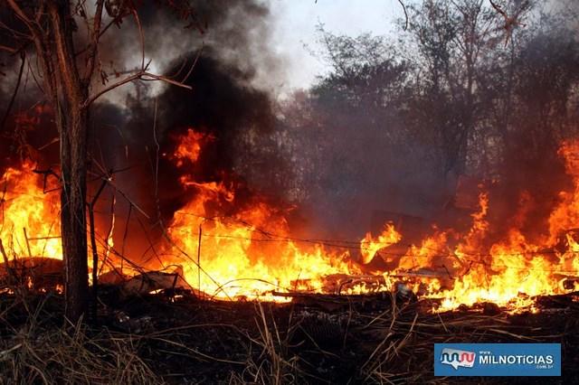 Graças a intervenção do proprietário e do Corpo de Bombeiros, as chamas não se alastraram para o depósito principal de material reciclável. Fotos: MANOEL MESSIAS/Agência