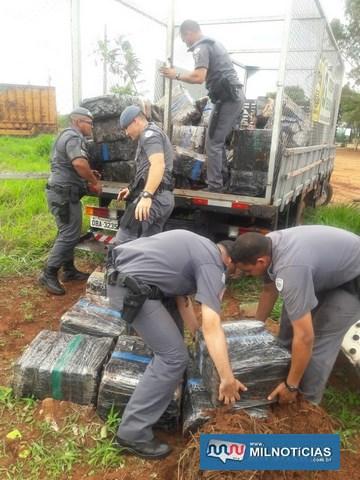 Carga de maconha foi apreendida em Santa Mercedes — Foto: Mariana Gouveia/TV Fronteira