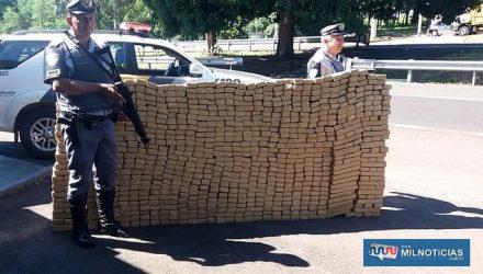 Foram apreendidos 929 tabletes prensados de maconha (Cannabis Sativa). Foto: MANOEL MESSIAS/MIL NOTICIAS