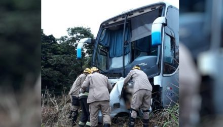 Carro bateu de frente contra ônibus na BR-020, em Formosa, Goiás — Foto: Divulgação/Corpo de Bombeiros.