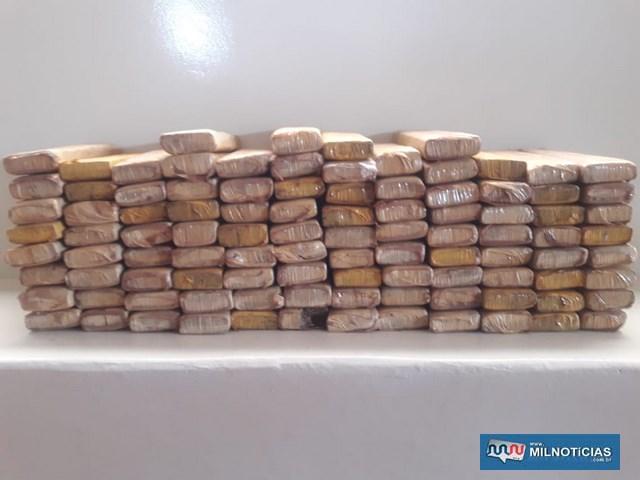 Foram apreendidos 100 tabletes de maconha, que pesaram 70 quilos. foto: DIVULGAÇÃO