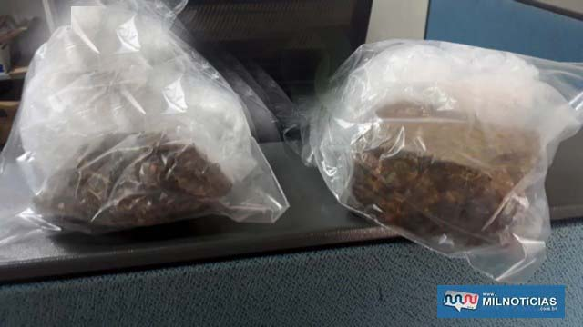Os dois pacotes de entorpecentes foram apreendidos pela Polícia Civil. Foto: MANOEL MESSIAS/Agência