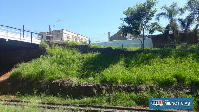 Barranco tem aproximadamente 3 mt de altura. Foto: DIVULGAÇÃO