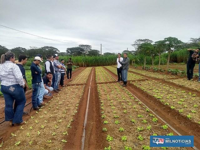 Estudantes puderam visitar hortas de produtores que estão participando do Sistema de Produção e Comercialização de Andradina. Foto: Secom/Prefeitura