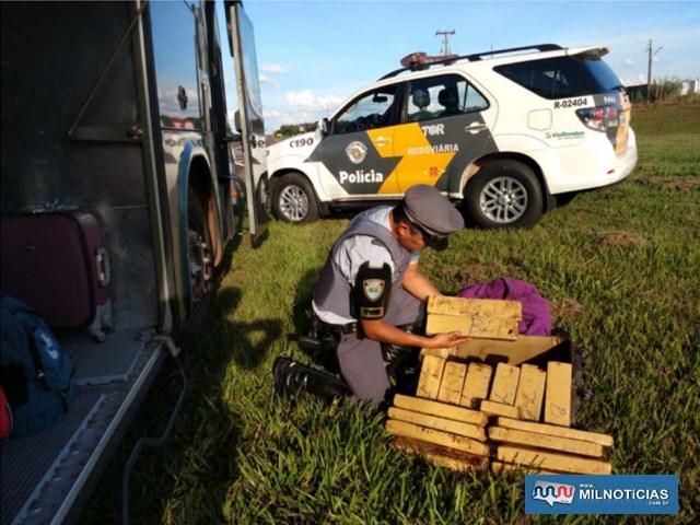 Foram localizados 16 tijolos de maconha, pesando aproximadamente 16 quilos. Foto: DIVULGAÇÃO/PMRv