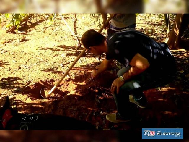 Policiais civis precisaram cavar o terreno em busca de entorpecente. Foto: DIVULGAÇÃO