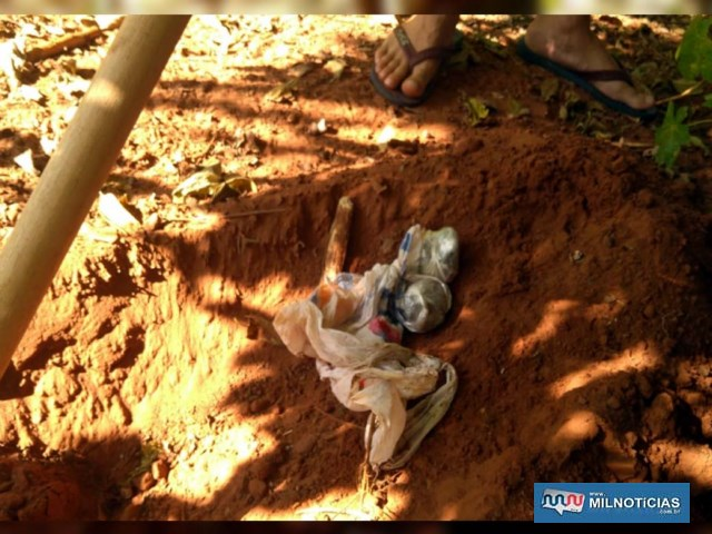 Foram localizadas duas porções grandes de maconha enterrada e enrolada em sacola plástica. Foto: DIVULGAÇÃO