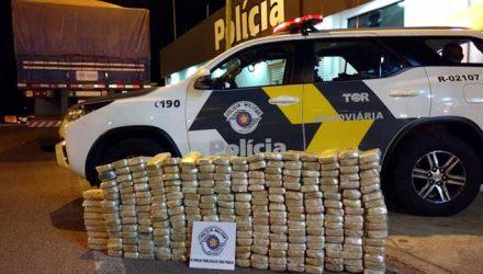 Polícia apreende 255 tabletes de pasta base cocaína escondidos em fundo falso de caminhão — Foto: Polícia Rodoviária / Divulgação