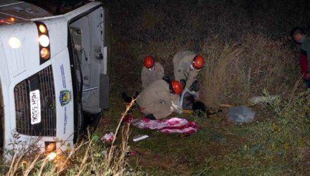 Entre os feridos estão uma gestante, de 22 anos, uma adolescente, de 15 anos, e uma criança, de 4 anos (Foto: Reprodução/ O Correio News)
