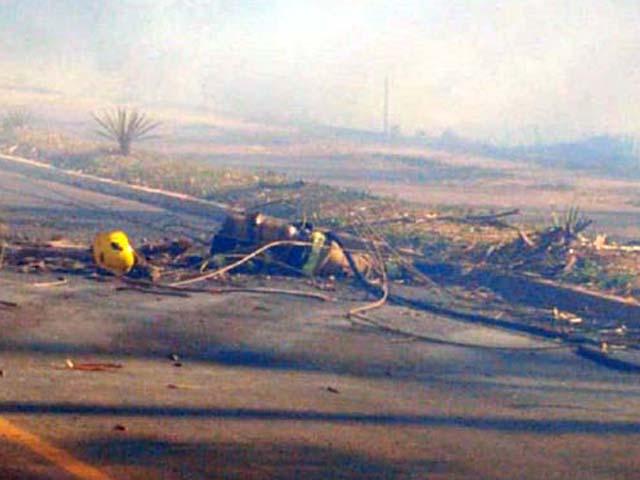 Durante o trabalho da militar, a árvore veio a cair, atingindo a vítima e derrubando fios de alta tensão. Foto: Reprodução