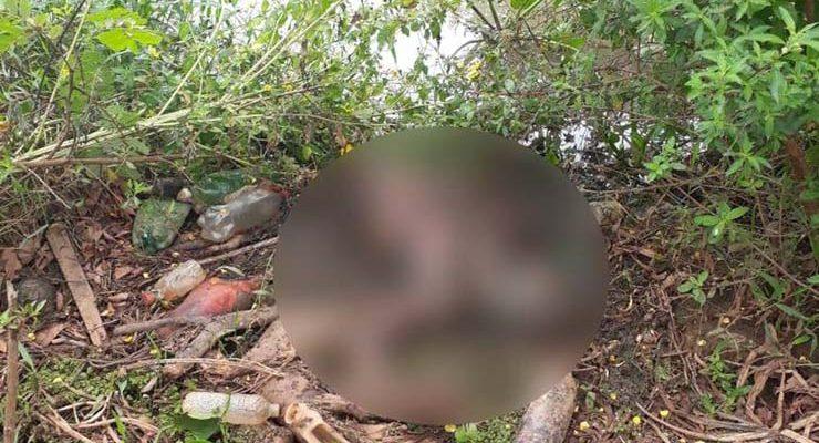 Corpo encontrado às margens do rio, em Cáceres (MT) — Foto: Polícia Civil - MT.