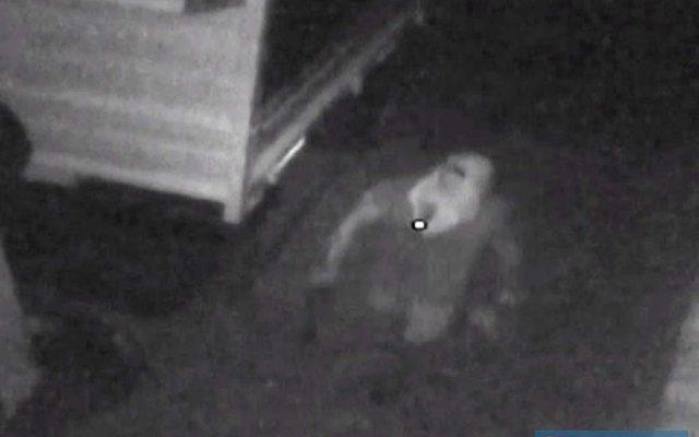 Imagens de câmeras de segurança não são de boa qualidade, mas é possível notar a ação criminosa. Fotos: DIVULGAÇÃO