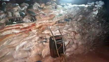 Duas pessoas morreram e sete foram presas na noite deste sábado, 21, durante ação da Polícia Civil contra uma quadrilha que escavava um túnel de 63 metros, Foto: DIVULGAÇÃO