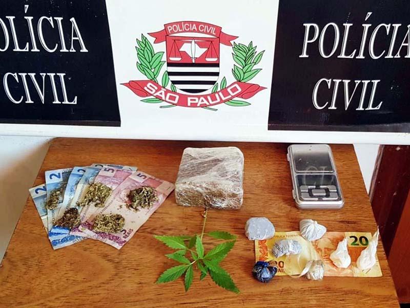 Foram apreendidos um tablete de maconha pesando 230 gramas, porções da mesma droga e um pé da planta entorpecente. Foto: Polícia Civil/Divulgação