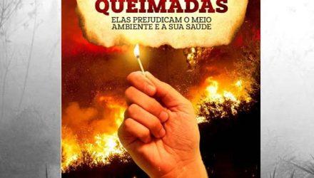 queimadas1