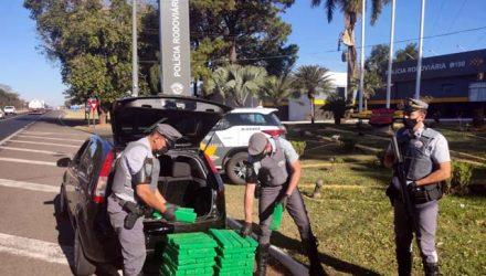 Morador de Três Lagoas/MS, de 25 anos foi preso com 219 tabletes de maconha. Foto: PMRv/Divulgação
