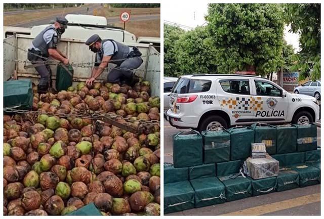 Mais de 700 quilos de cocaína foram encontrados por equipes do Tático Ostensivo Rodoviário — Foto: Divulgação/TOR