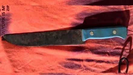 Acusado utilizou uma faca de cabo azul para cometer o roubo. Foto: Divulgação